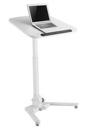 mobile Sit to Stand Work Station